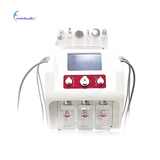 6 in 1 Hydra water Dermabrasion RF Bio-lifting Spa Facial Machine/Hydro Microdermabrasion Machine
